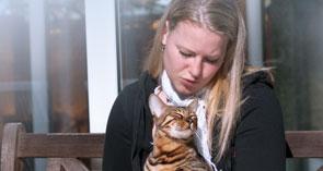 New Clients | Nova Cat Clinic