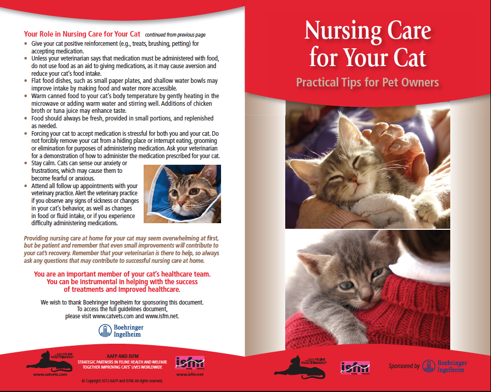 Nursing care - cover