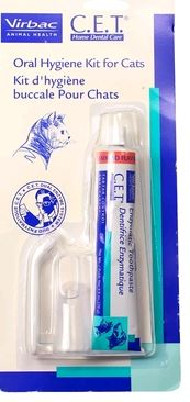 Can You Give Cats Toothpaste